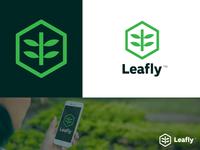 Leafly Logo Presentation