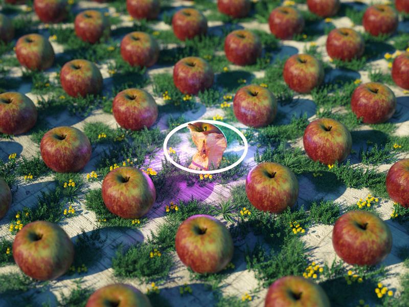 Apple Scatter! 3d octane render glow fruit 3d scan cinema 4d apple