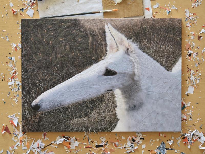 Lapsha, studio paper art scissors studio collage art paper collage paper illustration art collage nose dogs canine portrait dog