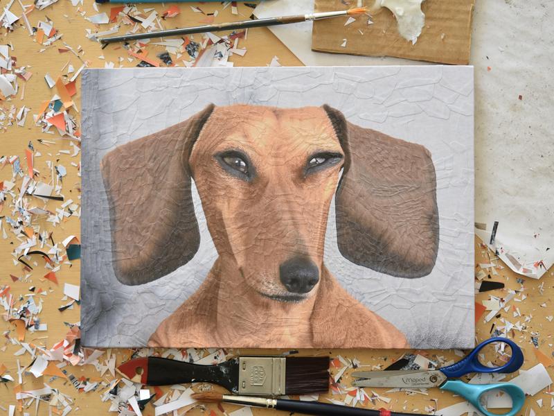 George the Sausage, studio paper art scissors studio collage art art paper collage illustration paper collage dog illustration portrait dogs dog