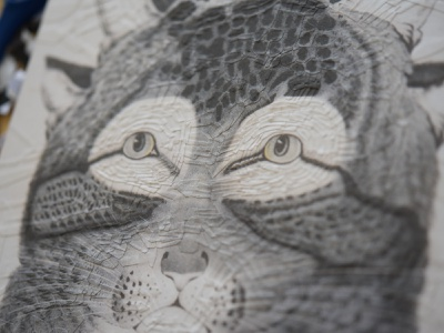 Cat after Nathaniel Currier, detail illustration paper collage detail portrait eyes cats