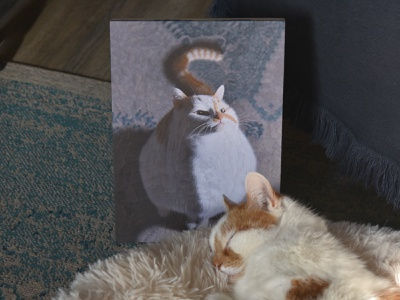 Charlie 32 with Charlie collage portrait cat charlie