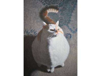 Charlie 32 cat collage collage cat art cat illustration cat portrait portrait cats cat charlie