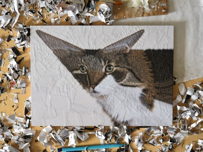 Mia, studio paper art studio cat portrait portrait cats cat