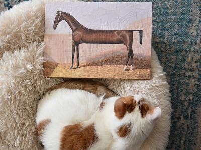 Lollypop, Charlie charlie cat studio art paper collage paper illustration collage