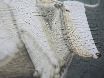 Bull after Jean Bernard, detail studio detail portrait illustration paper collage