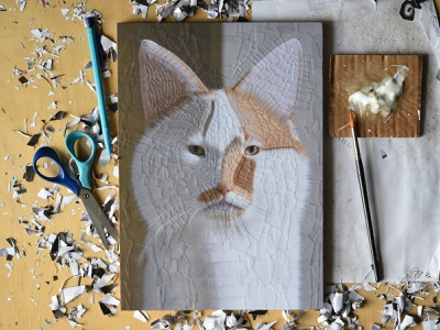 Charlie 35, studio art paper collage paper collage illustration portrait studio cats cat