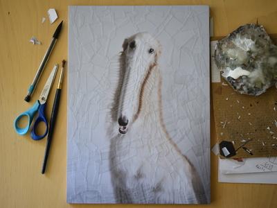 Fargo, studio studio portrait collage dogs do borzoi