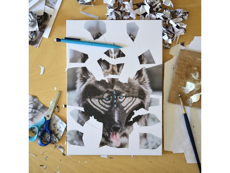 Summit work in progress 1 dog scissors studio collage art art paper collage portrait illustration paper collage dog portrait canine eyes work in progress wip dogs