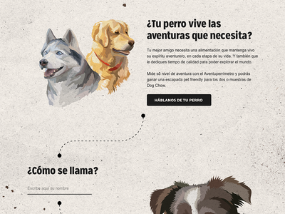 Dogchow Microsite art directiom purina campaign dogs ui ux form design site dog
