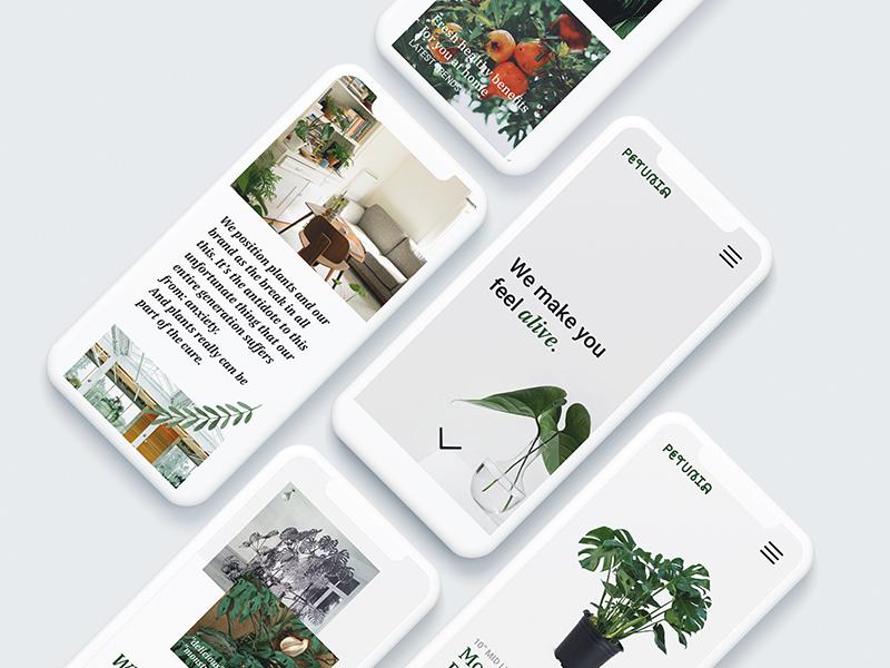 Petunia Ecommerce Mobile mobile online shop nature plants petunia ecommerce