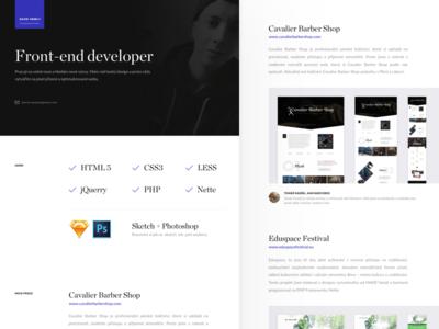 David Vesely portfolio css portfolio fe front-end genius developer