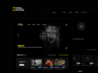 Re design the web site National geographic abu dhabi