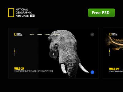 Download Re Design National geographic abu dhabi free dowload free dark design photoshop site ui ux web