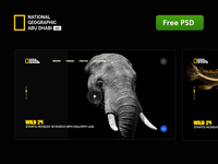 Download Re Design National geographic abu dhabi free