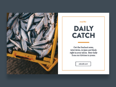 The Daily Catch dailyui day26 web ui typography type minimal lifestyle food design