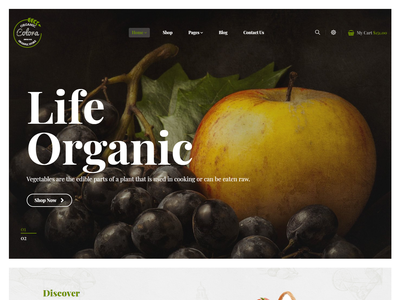 Colora - Organic Food eCommerec Bootastrap 4 Template responsive organic store organic food modern health grocery store fresh fruit food farm ecommerce business eco products creative clean bootstrap 4 agriculture