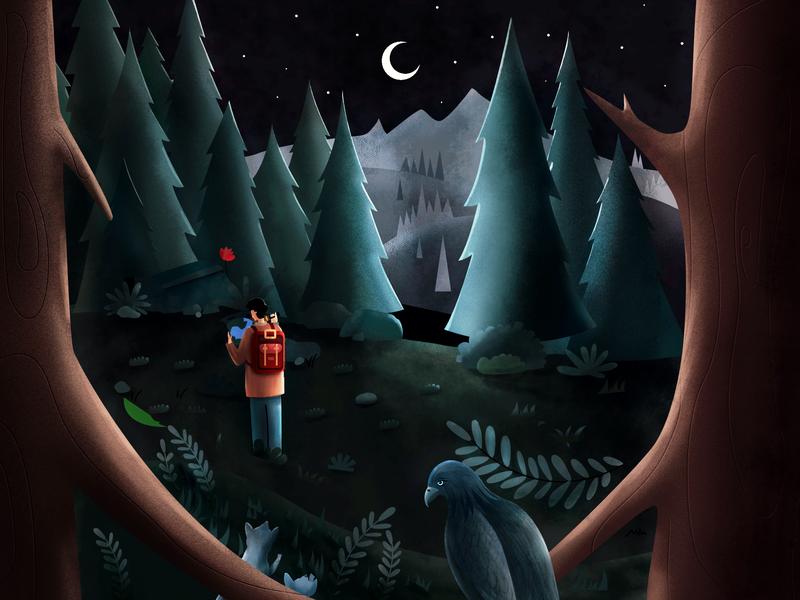 冷眼旁观 affinitydesigner wolf eagle exploration forest illustrations