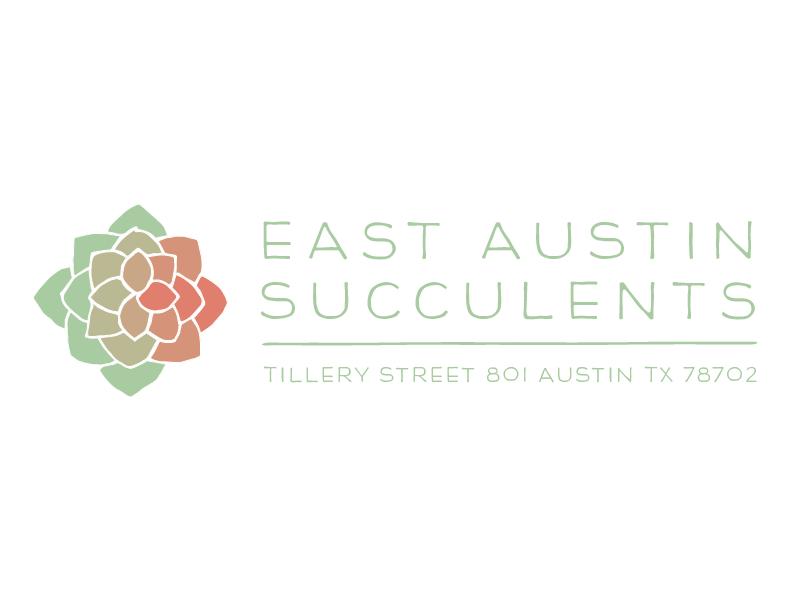 East Austin Succulents freelance kelsey damaris succulents austin east