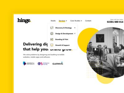 Hinge Website - Dropdown