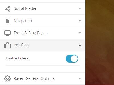 Options  theme wordpress template customization options