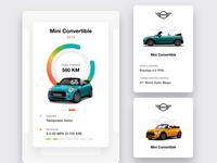Mini Cooper Car Care Design