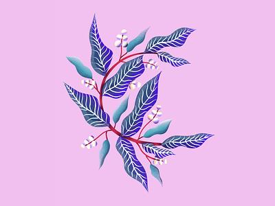 Letter C design drawing procreate illustration botanical leaves leaf floral flowers letter c letter procreate typography 36daysoftype illustration