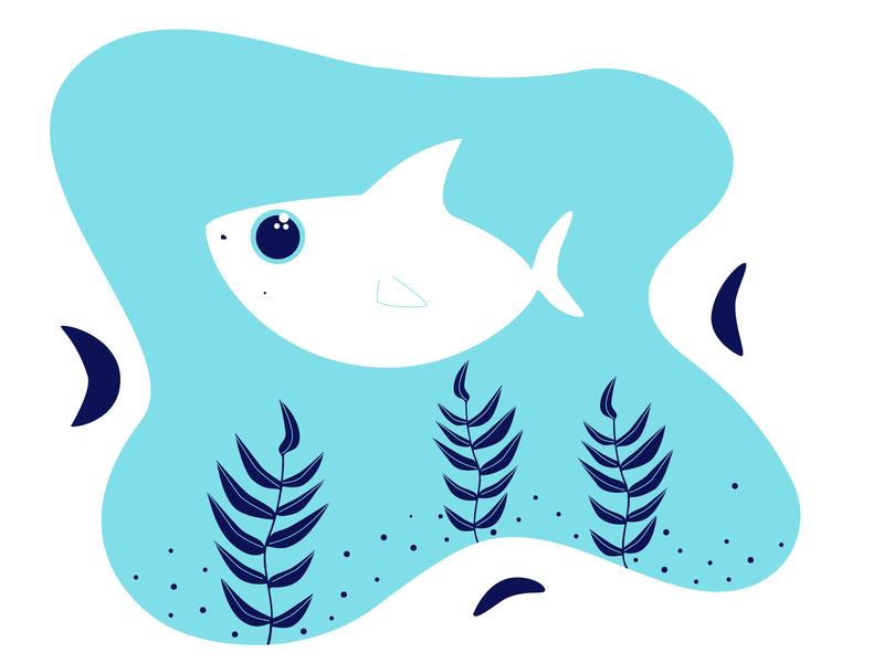 Sharky plants sharks shark design cute animal cute vector character adobe 2d illustrator illustration