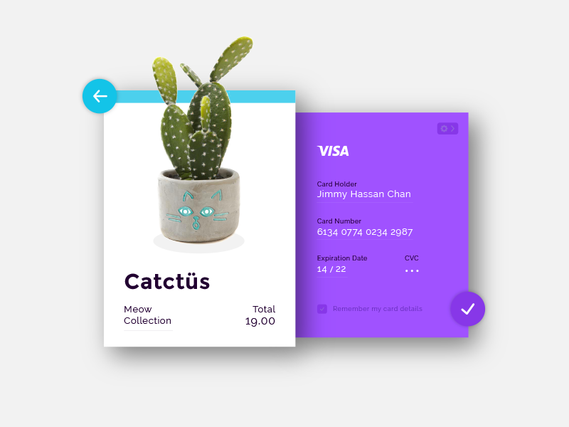 DailyUI Challenge #002 - Credit Card Checkout purple cat cactus playful checkout credit card colorful 002 login ui dailyui