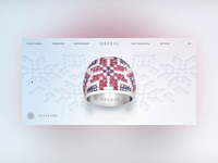 Oberig Homepage Animation