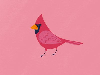Cardinal is
