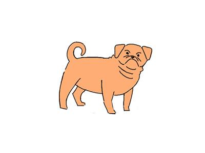 Pug design character drawing photoshop pug