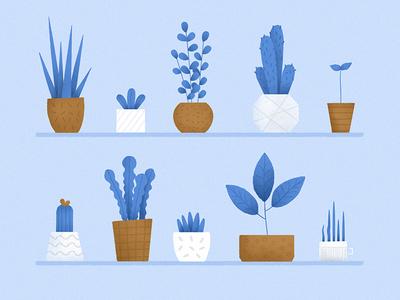 Plants illustrator photoshop texture flat blue vector minimalism plants illustration