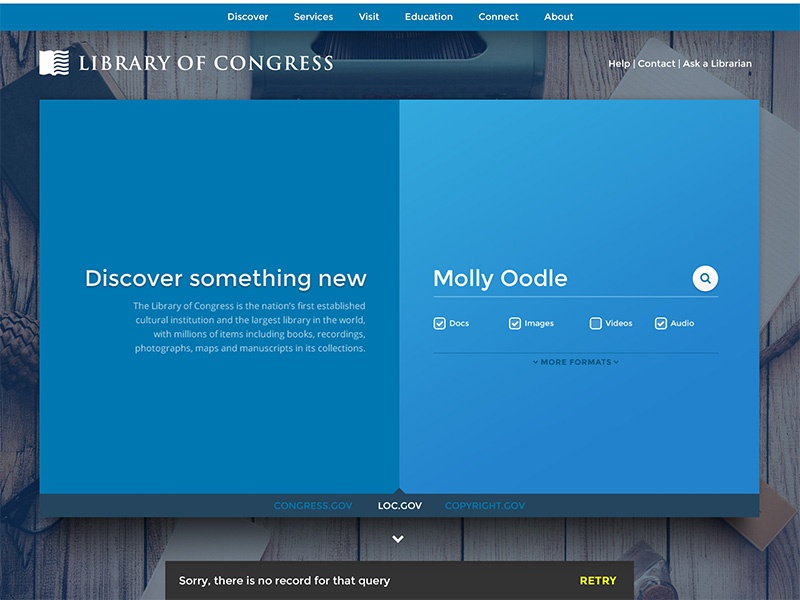 DailyUI Day011 web design blue redesign media books library search ui dailyui