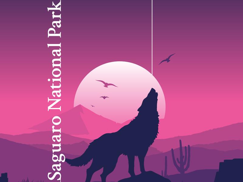 Saguaro National Park national parks bsds weekly challenge