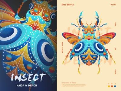 SA9527- 海达艺术 & 甲虫世界 01