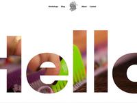 Website Design Landing