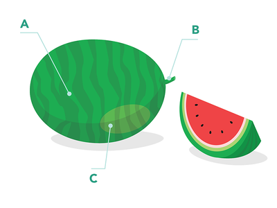 How to pick a 🍉 hints tips survival summer pick watermelon