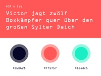 Digitalisiererin.NRW Colors And Fonts