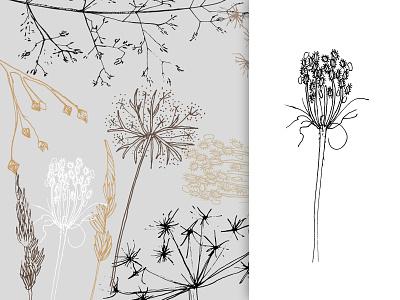 meadow moods - illustrations illustration