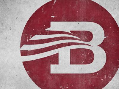 Campaign Logo logo branding