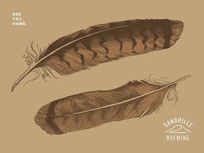 Sandhills Red Tail Feather bird feather branding brewing company brewery beer branding beer art beer