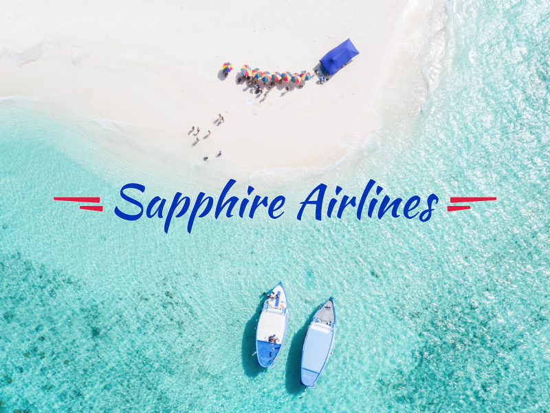 The logo is real, the airline is not vacation beach travel airline logo