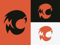 Cincinnati Bengals Logo-Rebrand