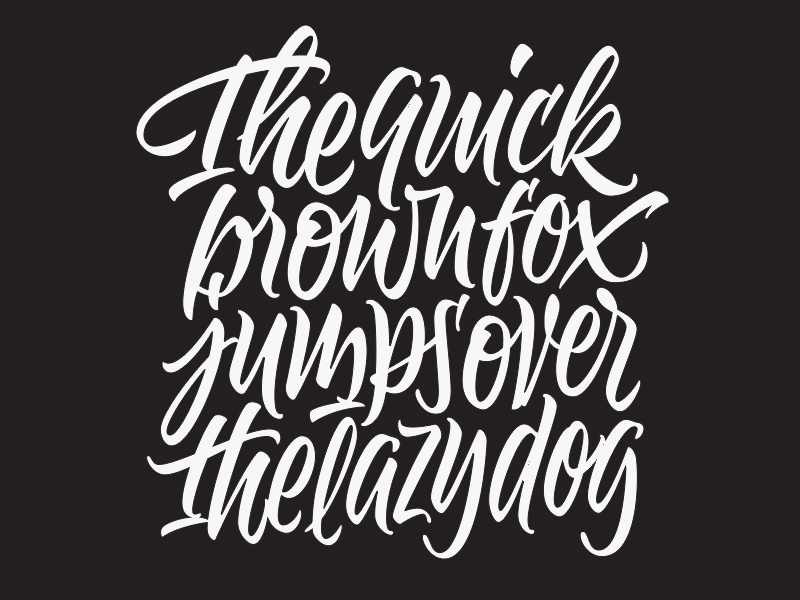 The quick brown... brush script type typography lettering
