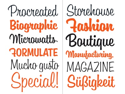 Boutiera typeface font typeface type script brush typography