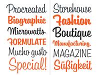 Boutiera typeface