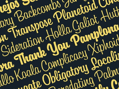 Boutiera typeface font typeface lettering type script brush typography
