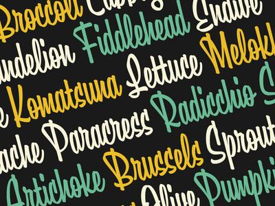 Boomville typeface font typeface type script brush typography
