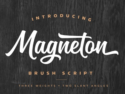 Magneton typeface font typeface type script brush typography